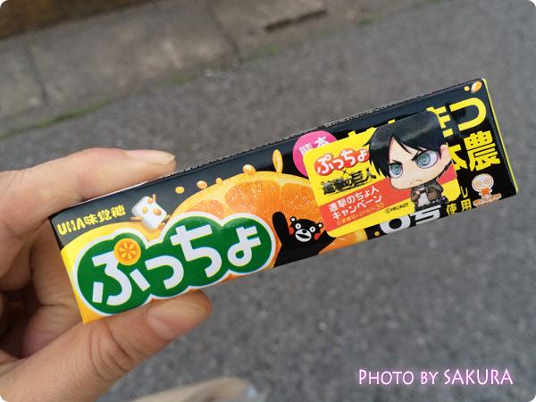 UHA味覚糖ぷっちょ 進撃の巨人キャンペーンシール付 エレン柄