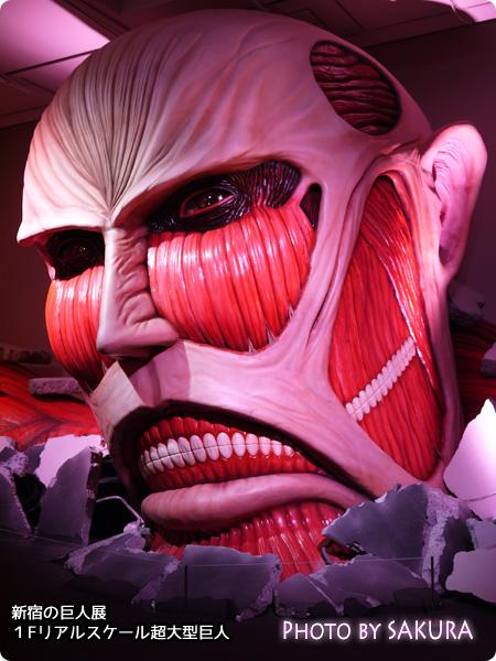 リアルスケール超大型巨人!進撃の巨人展1F展示エリア4【ネタバレ感想】超大型巨人 斜めから