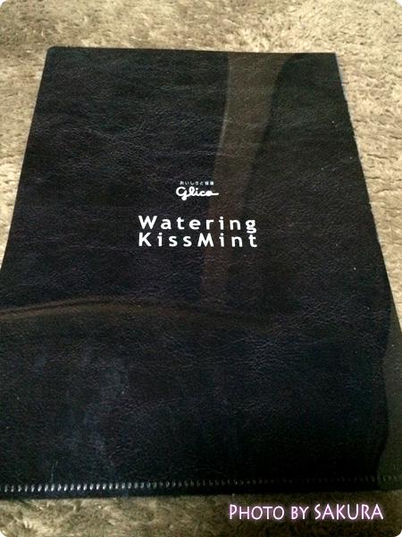 グリコ「Watering KISSMINT(ウォータリングキスミント)」2個とKis-My-Ft2(キスマイフットツー)クリアファイル 裏側