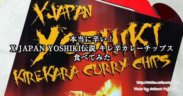 本当に辛い!X JAPAN YOSHIKI伝説 キレ辛カレーチップス食べてみた
