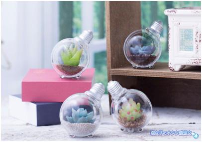 豆電球の中にグリーンのガチャガチャ「豆電球テラリウム」全4種で登場!インテリアにも