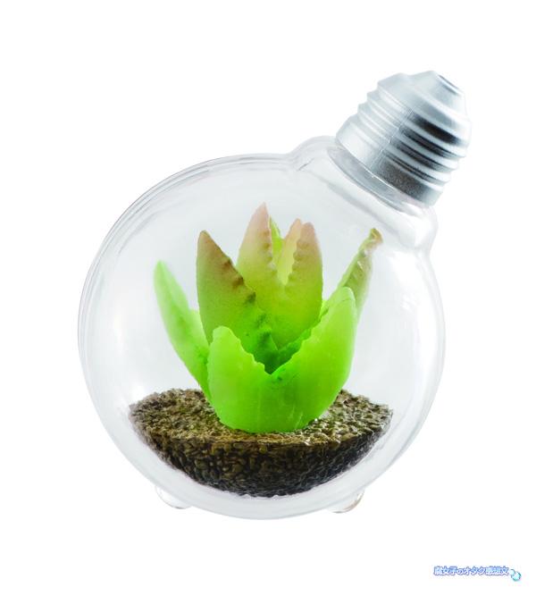 バンダイのガシャポン(ガチャガチャ)「豆電球テラリウム」全4種類 アロエブレビフォリア