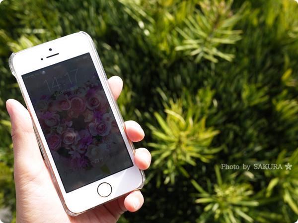 iPhone5s(au)で乗り換え月になった