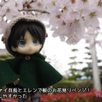 オビツろいどリヴァイ兵長とエレンで桜のお花見リベンジ!近所のほうが撮影しやすかった