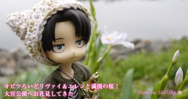オビツろいどリヴァイ&エレンと満開の桜!大宮公園へお花見してきた