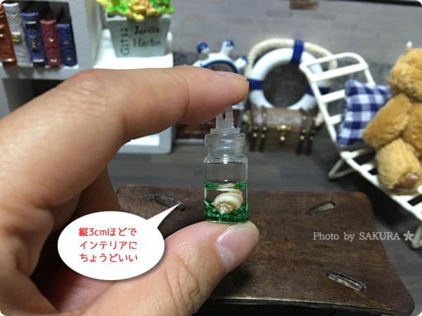 ミニチュアボトルシェル入り5色セット 縦3cmほどなので1/12サイズフィギュアやドールに!