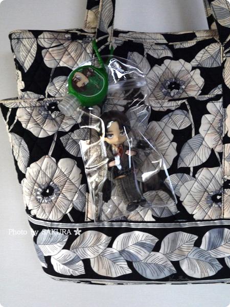スマホ用ジップ付き透明ビニールケースでオビツろいど用痛バッグでおでかけ