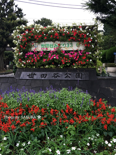 世田谷公園入口