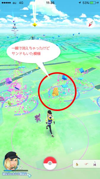千葉県柏駅東口 マクドナルド周辺ではサンドとも遭遇