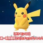【ポケモンGO】ピカチュウの巣・新宿御苑はピカチュウと遭遇できる場所だった(東京)