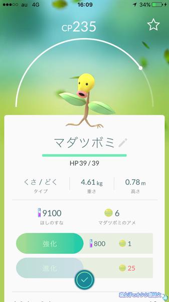 【ポケモンGO】新宿御苑でマダツボミゲット
