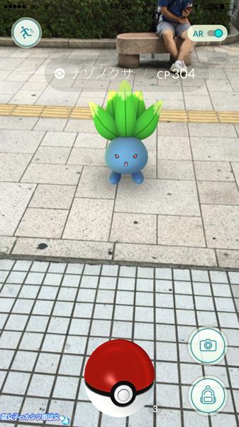 ポケモンGO「春日部ポケモンさくらまつり(お盆)」ナゾノクサ