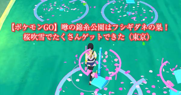 【ポケモンGO】噂の錦糸公園はフシギダネの巣!桜吹雪でたくさんゲットできた(東京)