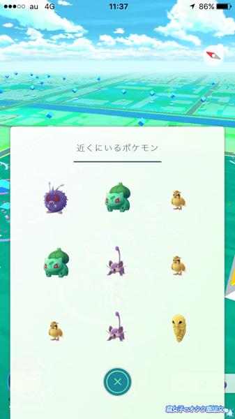 ポケモンGO 錦糸公園の近くにいるポケモン