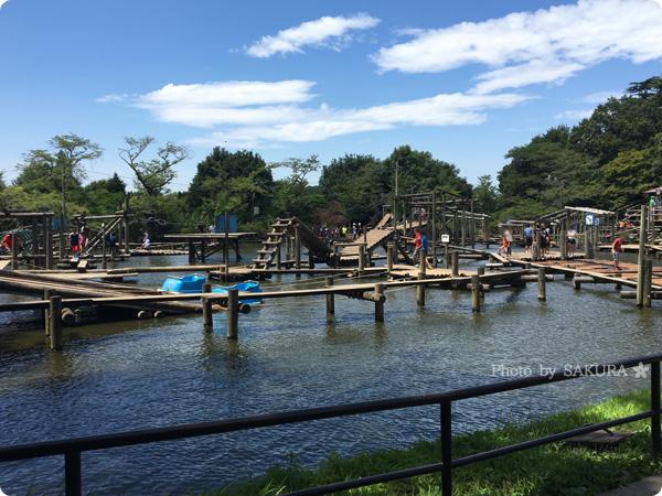 清水公園のフィールドアスレチック 水上コース