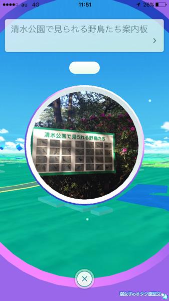 清水公園で見られる野鳥たち案内板がポケストップ