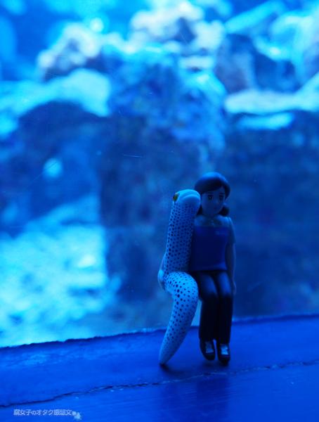 サンシャイン水族館×PUTITTO series フォトコンテスト 投稿例 その2