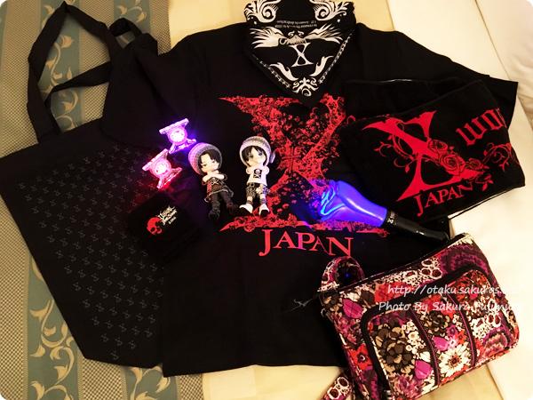 「VISUAL JAPAN SUMMIT 2016」2日目服装 オビツろいどたちと