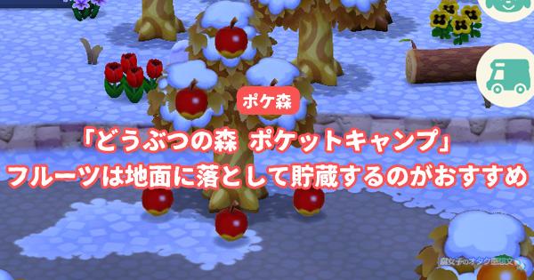 【ポケ森】フルーツは地面に落として貯蔵するのがおすすめ<どうぶつの森 ポケットキャンプ>