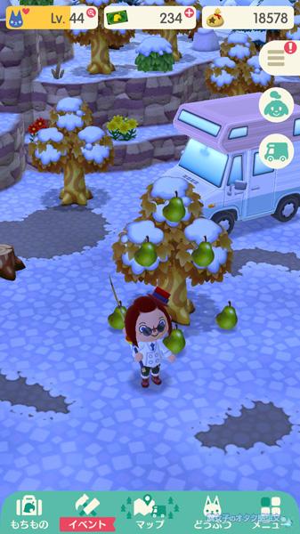 【ポケ森】フルーツは時間が経っても消えずに残る<どうぶつの森 ポケットキャンプ>