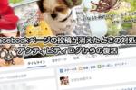 Facebookページの投稿が消えたときの対処法はアクティビティログからの復活